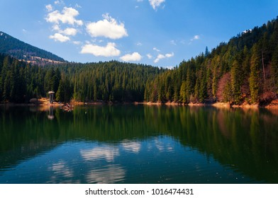 Amazing spring scenery on Synevyr Lake with wooden raft with tourists on the lake and mountains on background. National Natural Park Synevyr, Carpathian Mountains, Ukraine.