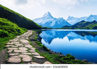 Amazing summer landscape with stone path on coast of Bachalpsee lake in Swiss Alps, clear blue water, green grass and snowy peaks of alpine mountains