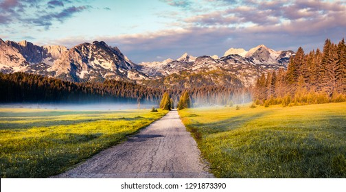 Amazing summer sunrise in Durmitor Nacionalni Park. Exciting foggy view of of Montenegro countryside, Zabljak town location. Beautiful world of Mediterranean countries. Traveling concept background.