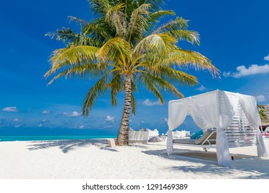 Amazing summer vacation background. Luxury scenery of beach with white beach canopy and loungers. Relaxing paradise island, luxurious tropical landscape. Dream scene, serenity beach, lounge canopy
