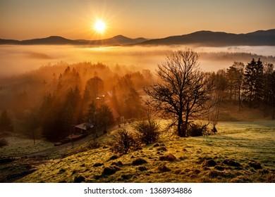 Amazing sunrise in Bohemian Switzerland National Park, Czech Republic, Europe