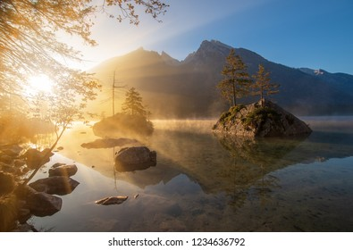 Amazing sunrise on Hintersee lake at autumn morning. Pine trees on stones reflected in the water. The fog spreads over the water. Magic painterly scene in Berchtesgaden Alps, Germany