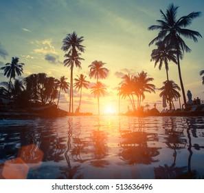 Amazing sunset on sea beach with palm tree.
