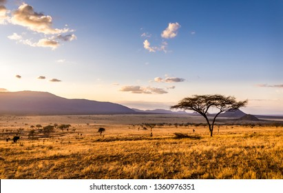 Amazing sunset at savannah plains in Tsavo East National Park, Kenya