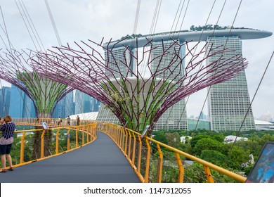 Amazing Supertree an impressive skywalk over the gardens at The Gardens by the Bay is colorful, futuristic park in the bay of Singapore a fantastic feeling wonder the travel destination in Singapore