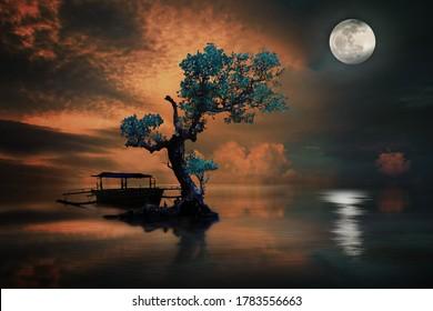 amazing tree under the moonlight