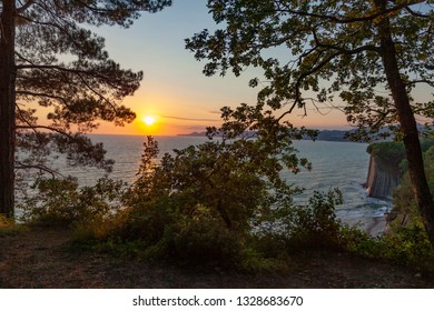 Amazing trees at sunset. Colorful landscape with trees and blue sea, mountains and sky with sun in the evening. Summer travel in Tuapse, Russia. Nature background.