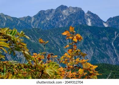 Amazing trekking area in Japanese North Alps.Mt Tsurugi