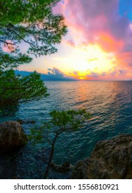 amazing vertical summer landscape, rocky coast of Adriatic Sea, cliff and trees at evening sunset, famous Croatian resort, breathtaking nature seascape, Makarska Riviera, Brela resort, Croatia, Europe