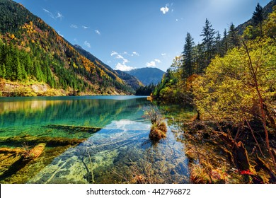 Amazing view of the Arrow Bamboo Lake with crystal clear water among mountains and colorful fall woods in Jiuzhaigou nature reserve (Jiuzhai Valley National Park), China. Scenic sunny autumn landscape