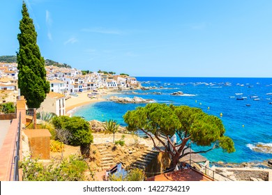 Amazing view of Calella de Palafrugell, scenic fishing village with white houses and sandy beach with clear blue water, Costa Brava, Catalonia, Spain