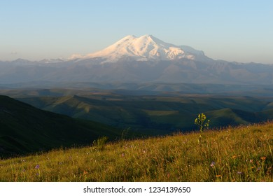 Amazing view of caucasian snow mountain or volcano Elbrus from Bermamyt plateau with green flower fields in fog, blue sky background. Elbrus landscape view - the highest peak of Russia and Europe.