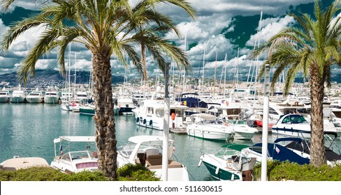 Amazing view of the city of Cannes, France, palm trees, yachts and azure sky