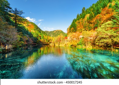 Amazing view of the Five Flower Lake (Multicolored Lake) among wooded mountains in Jiuzhaigou nature reserve (Jiuzhai Valley National Park), China. Colorful autumn forest reflected in azure water.
