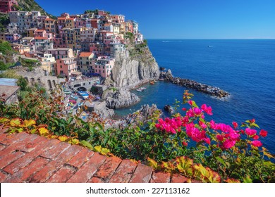 Amazing View Of Manarola City At Sunny Day With Blossoming Flowers On A Foreground Cinque