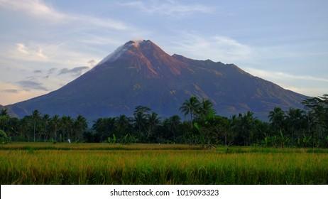 Amazing view of Merapi Volcano.