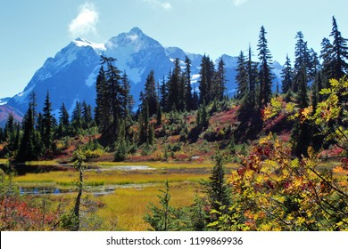 Amazing view of Mount Shuksan and vibrant colors around Picture Lake in the North Cascades