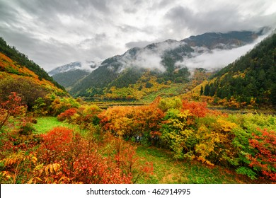 Amazing view of mountains in fog, evergreen woods and colorful fall forest in Jiuzhaigou nature reserve (Jiuzhai Valley National Park) of Sichuan province, China. Beautiful autumn landscape.