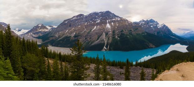 Amazing view of Peyto lake, Banff national park, Canada