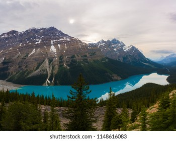 Amazing view of Peyto lake, Banff national park, Canada