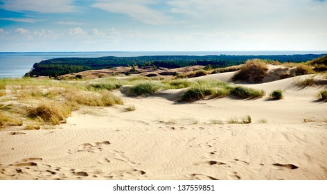 amazing view of sandy Grey Dunes at the Curonian Spit in Nida, Neringa, Lithuania
