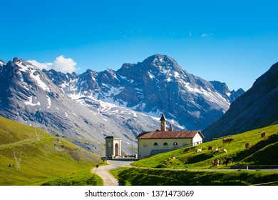 Amazing view from The Stelvio Pass, Italy. Beautiful nature: mountains, green grass and blue sky. The Alps from Italy. Summer time.