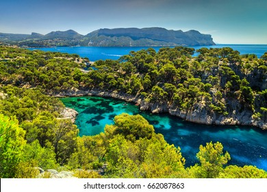 Amazing viewpoint on the cliffs, Calanques de Port Pin bay, Calanques National Park near Cassis fishing village, Provence, South France, Europe