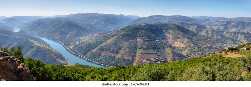 Amazing views of Douro vineyards from Sao Leonardo De Galafura viewpoint in Portugal
