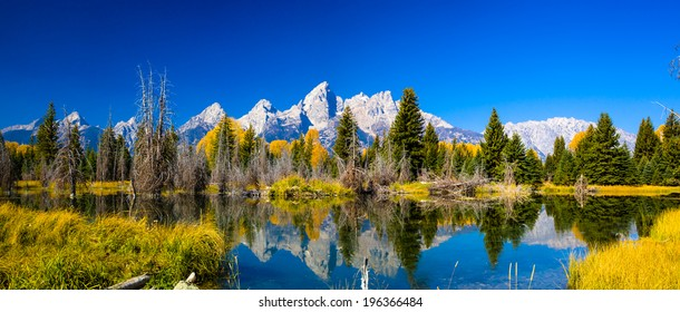 amazing views in Grand Teton National Park
