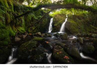 Amazing waterfall, hidden deep in a forest, surrounded by fallen trees. Beautiful and pleasant evening light shining from the top and creating gorgeous and relaxing mood. Pure and clean nature.