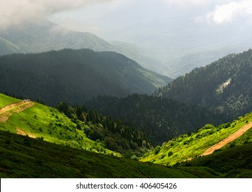 Amazing wild nature view of deep evergreen forest landscape on sunlight at middle of summer. Natural green scenery of cloud, road and mountain slopes that look as valley on background. Russia, Sochi
