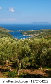 Amazingly beautiful view of Sivota village and it's bay - in Lefkada island in Greece. In front are the olive trees and in distance is Atokos island.