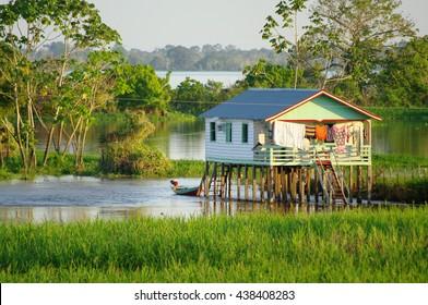 Amazon house