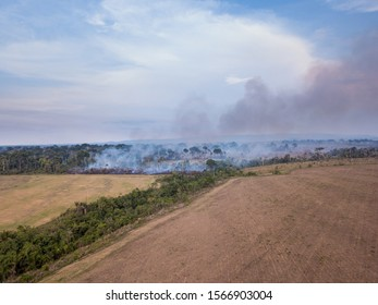 Amazon rainforest burning to increase pasture area for cattle and agriculture activities. Area already deforested in the foreground. Deforestation, environment, pollution and climate change concept.