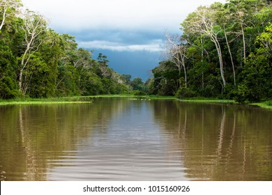 The Amazon River, in South America is the largest river in the world by lenght and discharge volume of water. It flows throug Brazil, Peru, Bolivia, Colombia, Ecuador, Venezuela and Guyana.