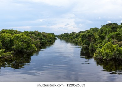 Amazonas, Brazil. Affluent river in the Negro River and Amazon rainforest.