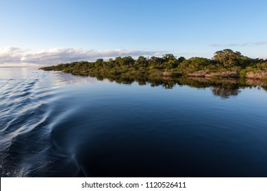 Amazonas, Brazil - River bank in the Amazon rainforest with dark waters of Negro river reflecting blue sky and vegetation on a sunny day.