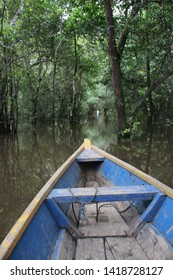 The Amazonas river in Colombia