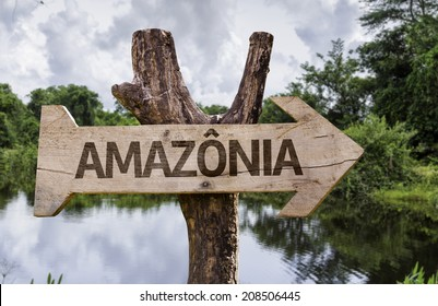 """Amazonia"" (In portuguese - Amazon Rainforest) wooden sign on a forest background"