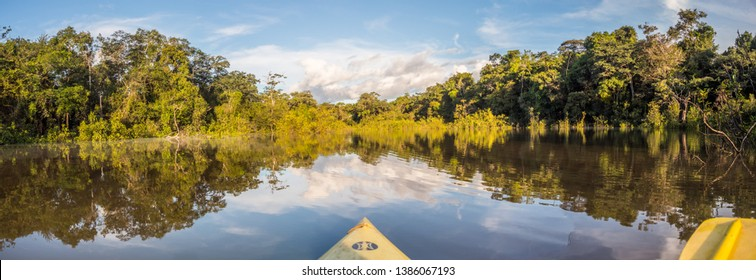 Amazonia. Panoramic, sunrise view seen from the kayak. Coati Lagoon near the Javari River, the tributary of the Amazon River. Selva on the border of Brazil and Peru. South America.