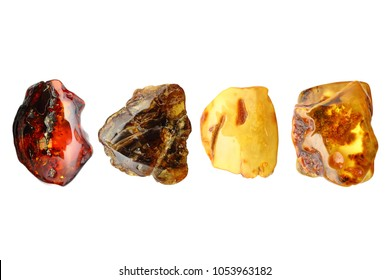 Amber. Four unique pieces of amber from the collection on a white background. Transparent shiny pieces of sunstone yellow, orange, brown color with inclusions and insects. Natural mineral for jewelers