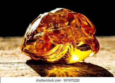 Amber in sun