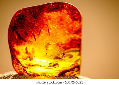Amber in sun with inclusions