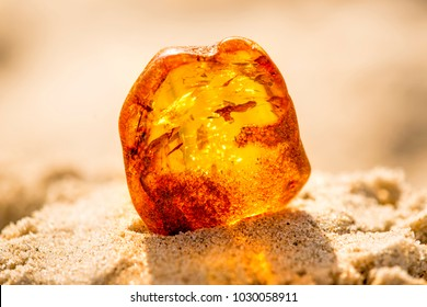 Amber in sun on a beach of the Baltic sea