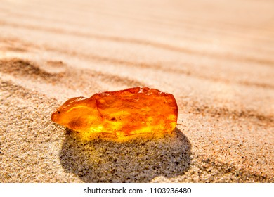 amber in sun on a beach of the Baltic sea in Poland