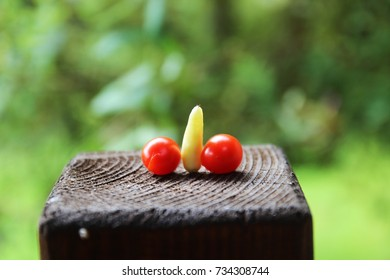 An ambiguous presentation of two little tomatoes and one unripe chili pepper on the trunk of brown wood in the green outdoor background