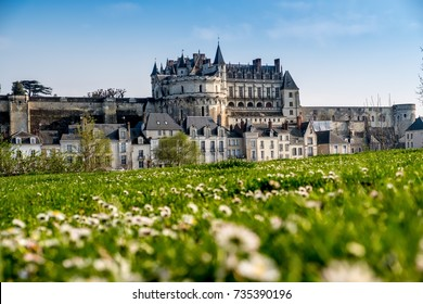 Amboise Castle in Loire Valley, Touraine region, France