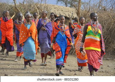 AMBOSELI, KENYA ,OCT. 13:Group of unidentified African women from Masai tribe prepare to show a traditional Jump dance on Oct 13, 2011 in Masai Mara, Kenya.
