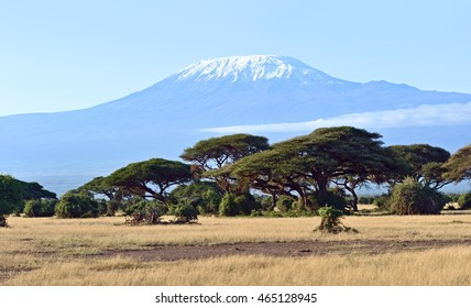 Amboseli National Park and Mount Kilimanjaro in Kenya
