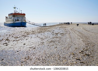 'Ameland' / the Netherlands - April 16th 2019: Excursion with a boat to a sand bank with oyster shell at low tide in the 'Wadden' Sea near the Frisian island 'Ameland'